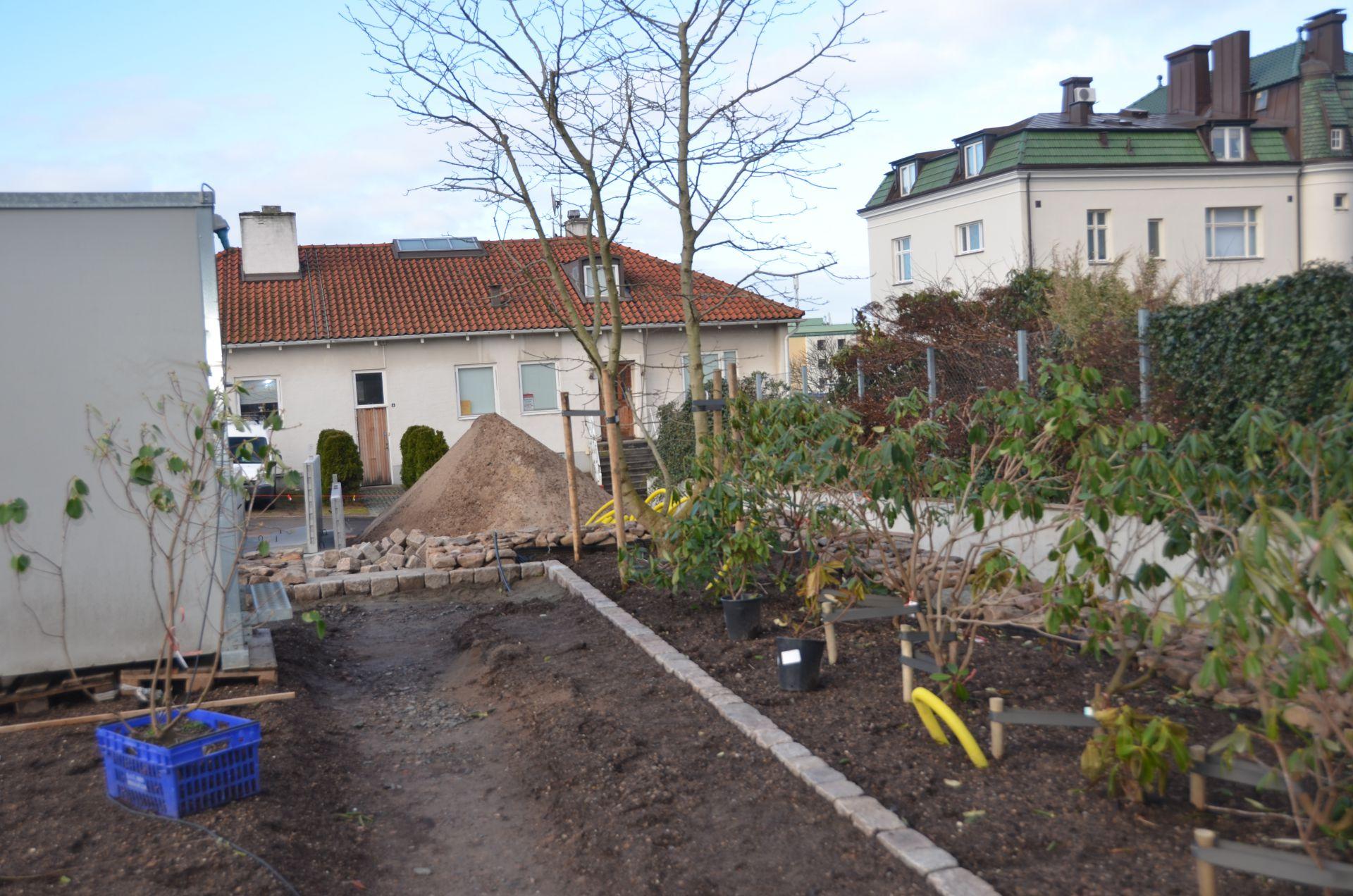 Bjäre Entreprenad anlägger ny trädgård i Helsingborg med automatisk bevattning, naturstenmurar och stengångar