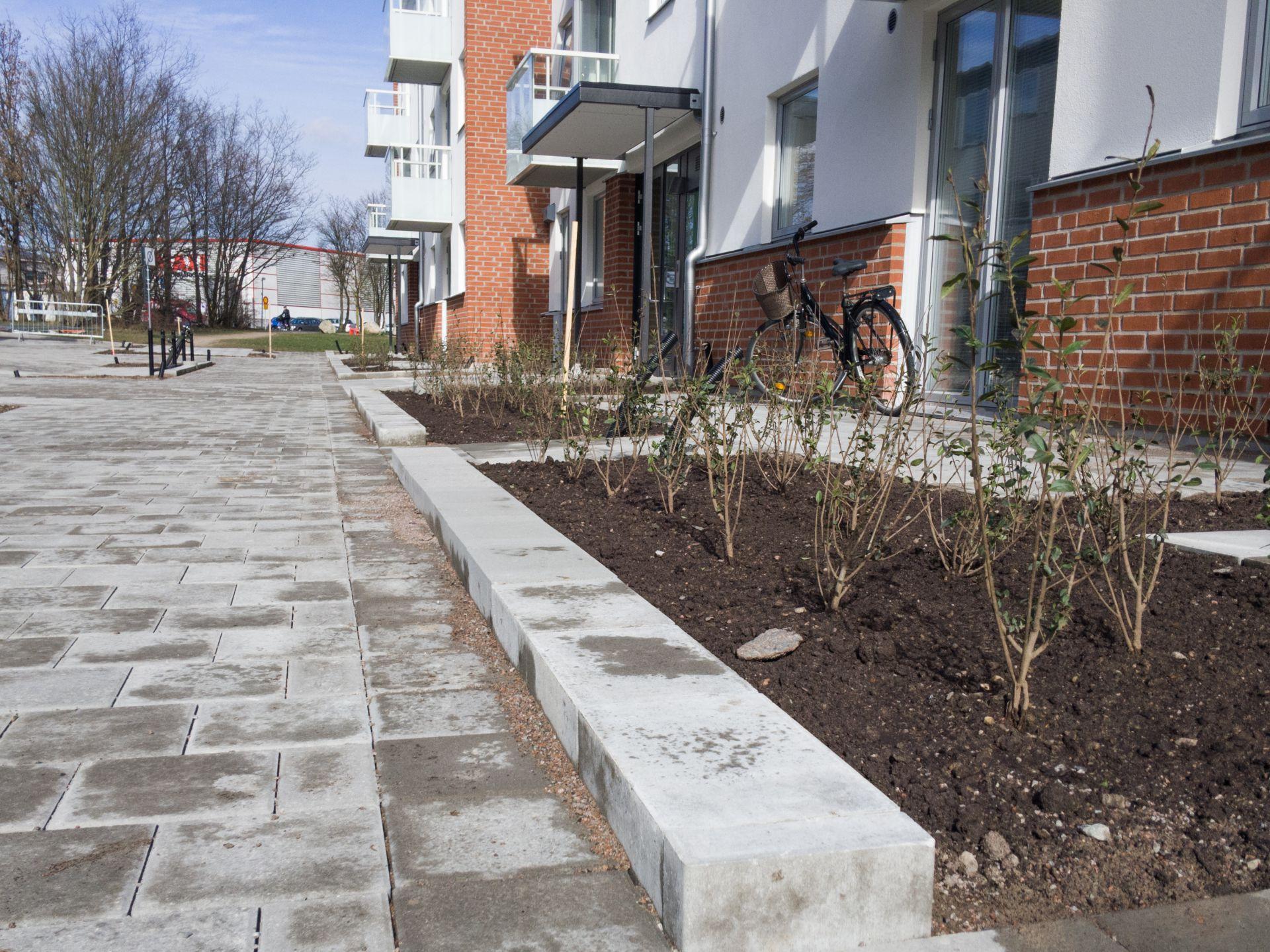 Markarbete som Bjäre Entreprenad gör för ombyggnad och nybyggnad av flerbostadshus i Grönkulla Helsingborg.Växter i förgrunden